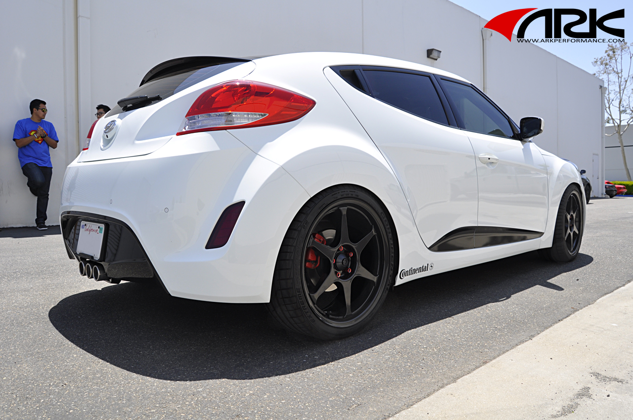 Ark Performance Inc Dts Triton Tip Exhaust System