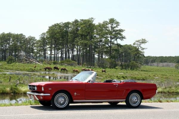 Showcase cover image for captainboz's 1965 Ford Mustang Convertible